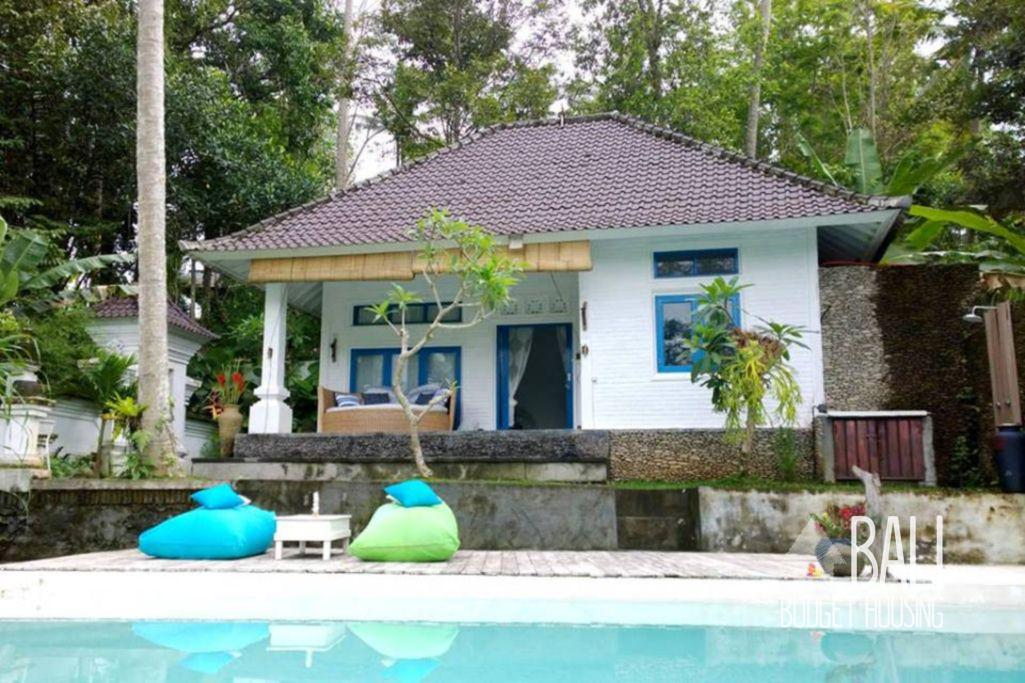 Long Term Rentals  Apartments Houses Holiday Rentals in
