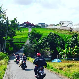 Getting around in Bali