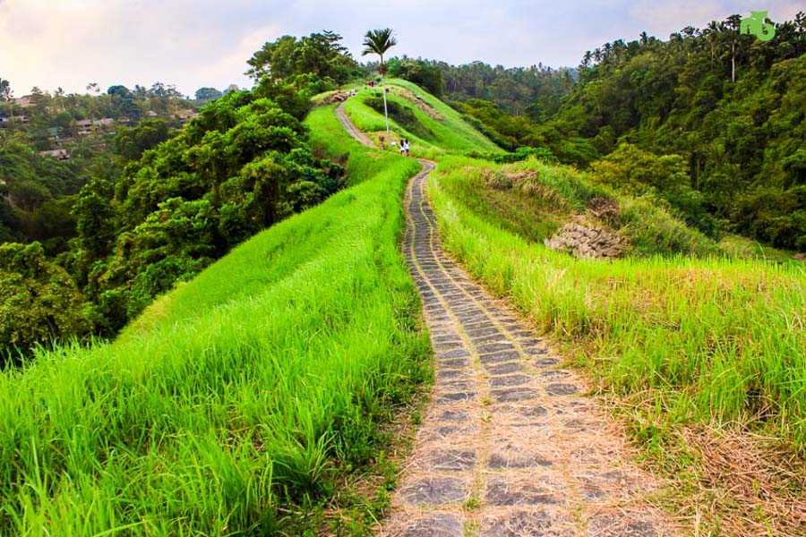 things to do in Ubud - Campuhan Ridge Walk