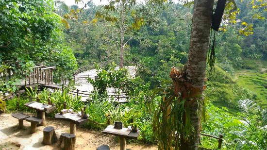 things to do in Ubud - Bali Pulina