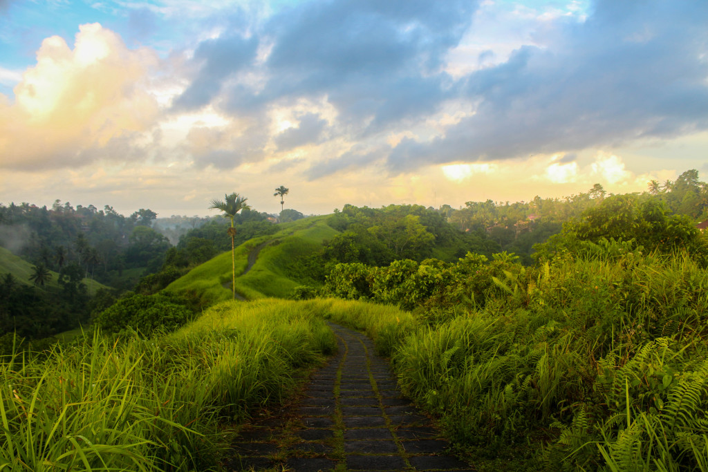 things to do in Ubud - Campuhan