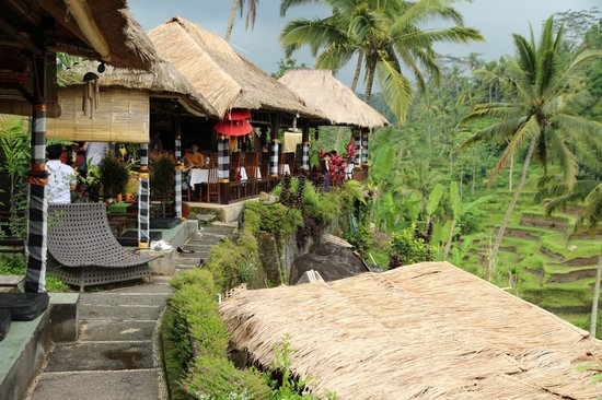 Things to do in Ubud - Tegalalang Rice Terrace