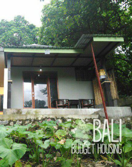 Ubud house for rent