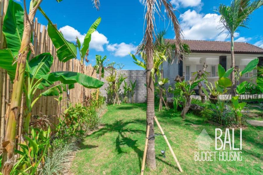 house for rent in Canggu