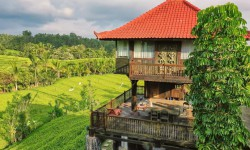 Tabanan house for rent